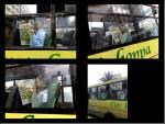 """Metrobus Adhesivo"""